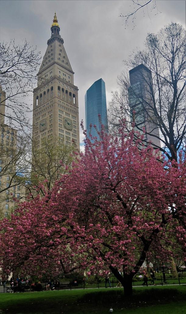 2018 04 29 67 New York City.jpg