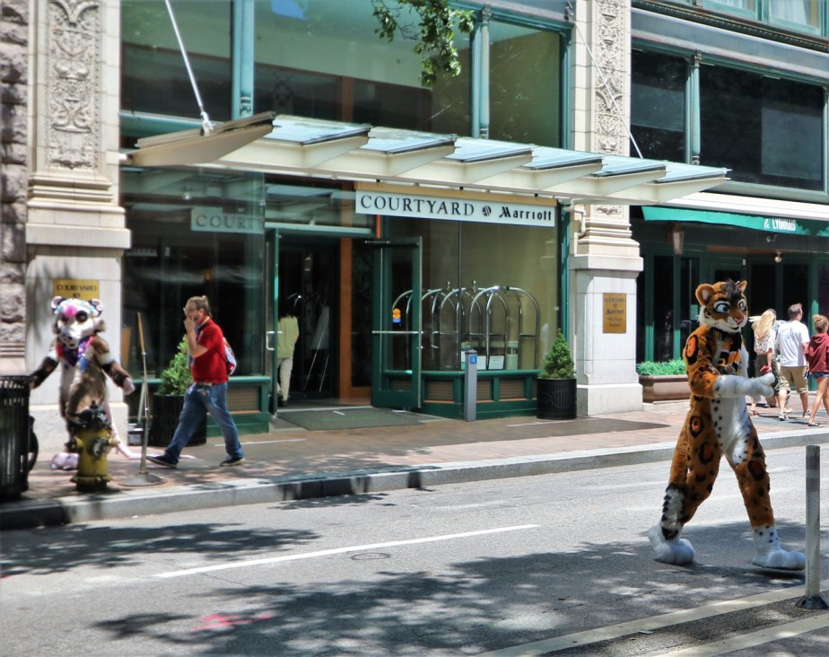 2018 07 07 123 Pittsburgh Furries.jpg