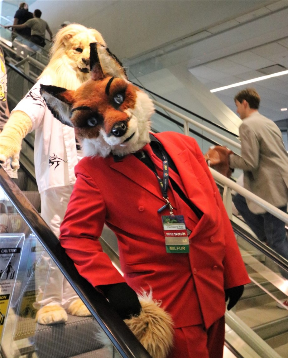 2018 07 07 132 Pittsburgh Furries.jpg