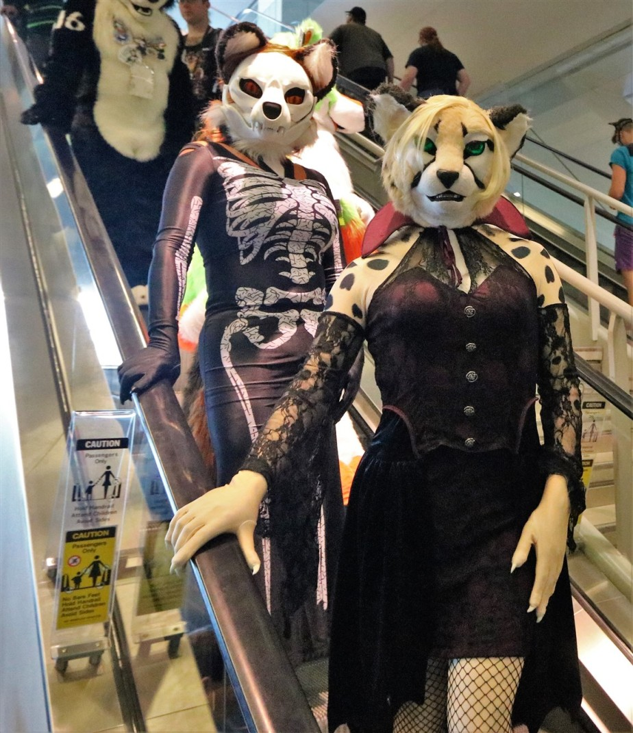 2018 07 07 139 Pittsburgh Furries.jpg