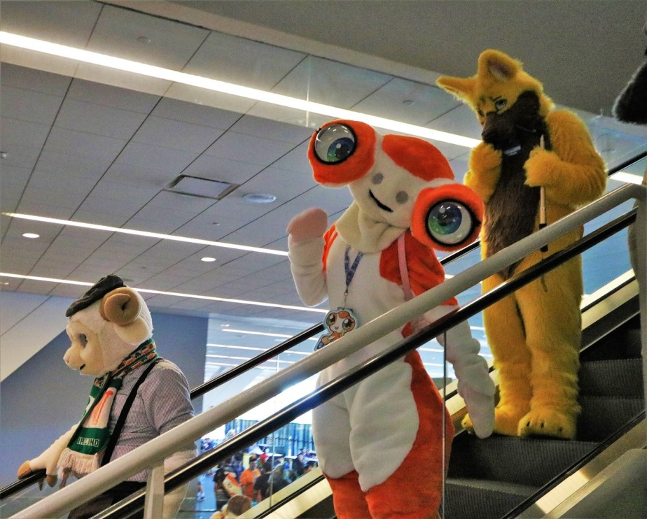 2018 07 07 151 Pittsburgh Furries.jpg