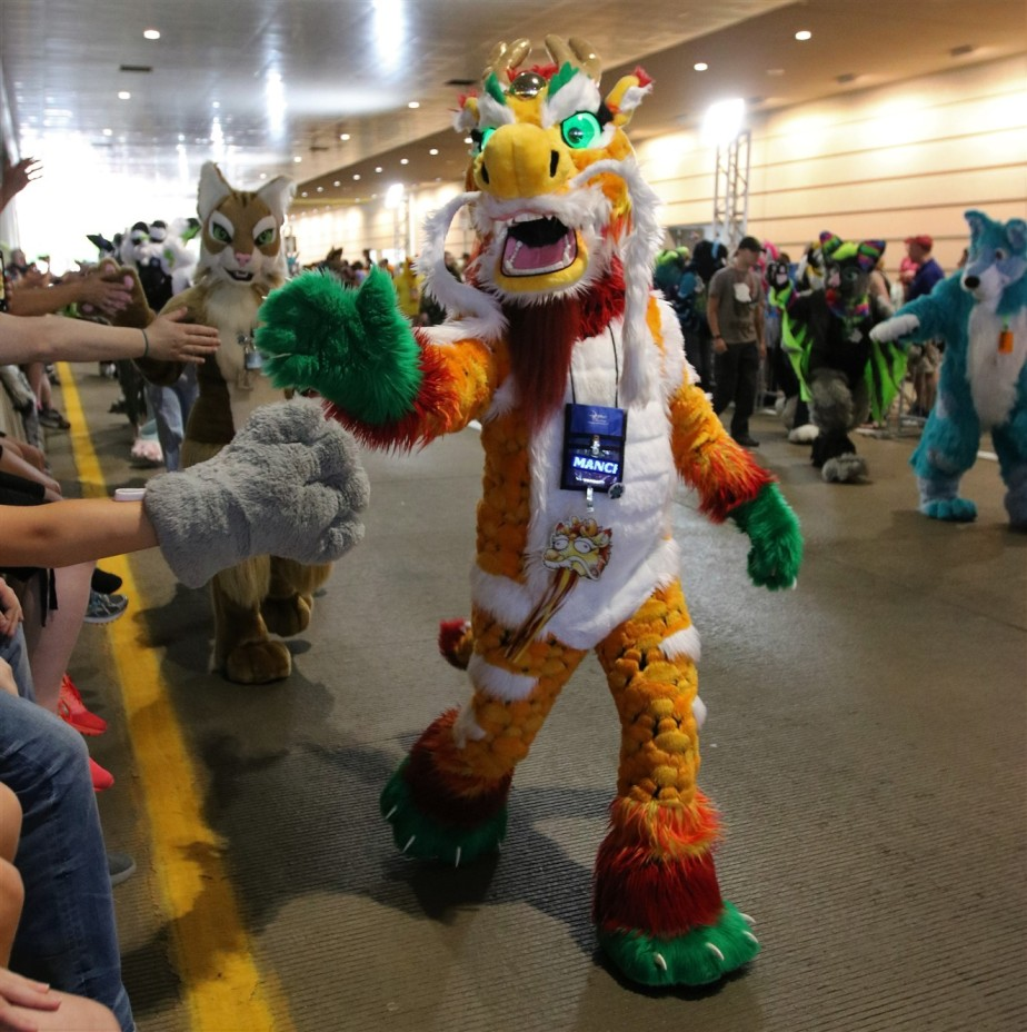 2018 07 07 192 Pittsburgh Furries.jpg