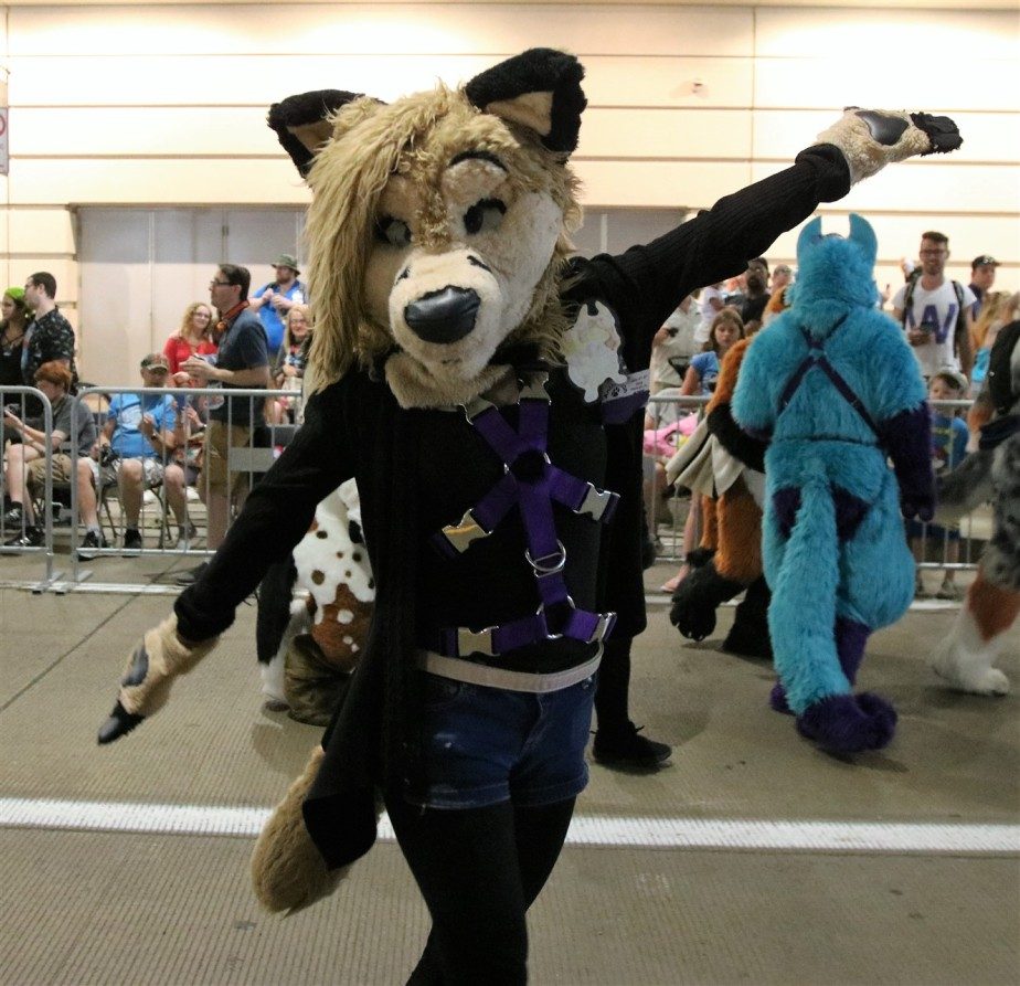 2018 07 07 213 Pittsburgh Furries.jpg