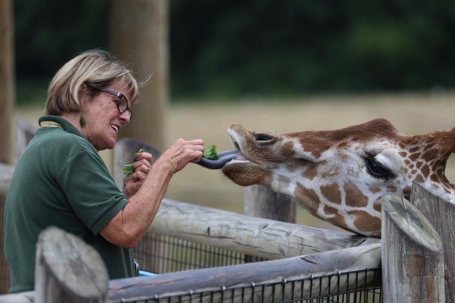 2018 07 29 174 Columbus Zoo.jpg