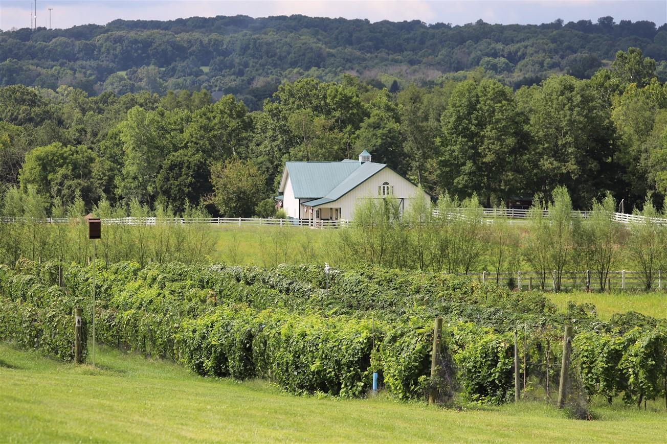2018 08 18 46 Lancaster OH Rockside Winery.jpg