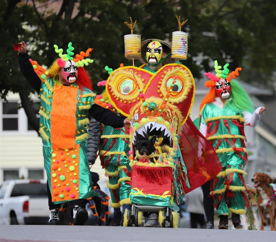2018 10 20 77 Lakewood OH Pooch Parade.jpg