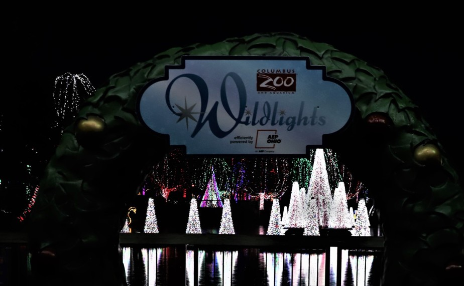 Columbus – December 2018 – Zoo Wildlights