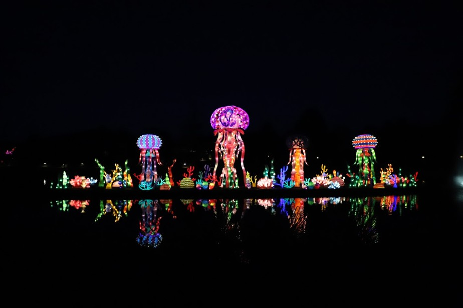 Huntsville, Alabama – May 2019 – Chinese Lanterns at the Botanical Gardens