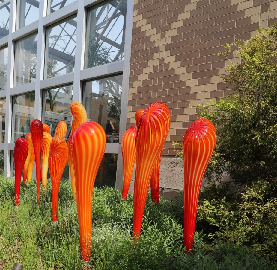 Columbus – July 2019 – Chihuly Glass Sculptures Exhibit