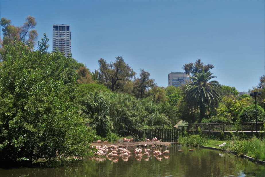 Buenos Aires – February 2020 – EcoPark