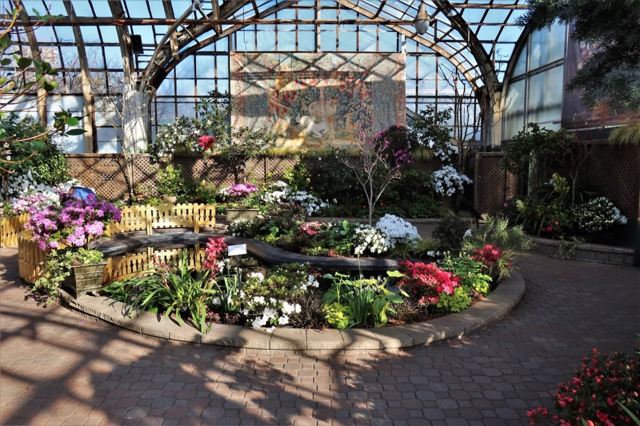 Chicago – February 2020 – Spring Comes Early at a Flower Conservatory
