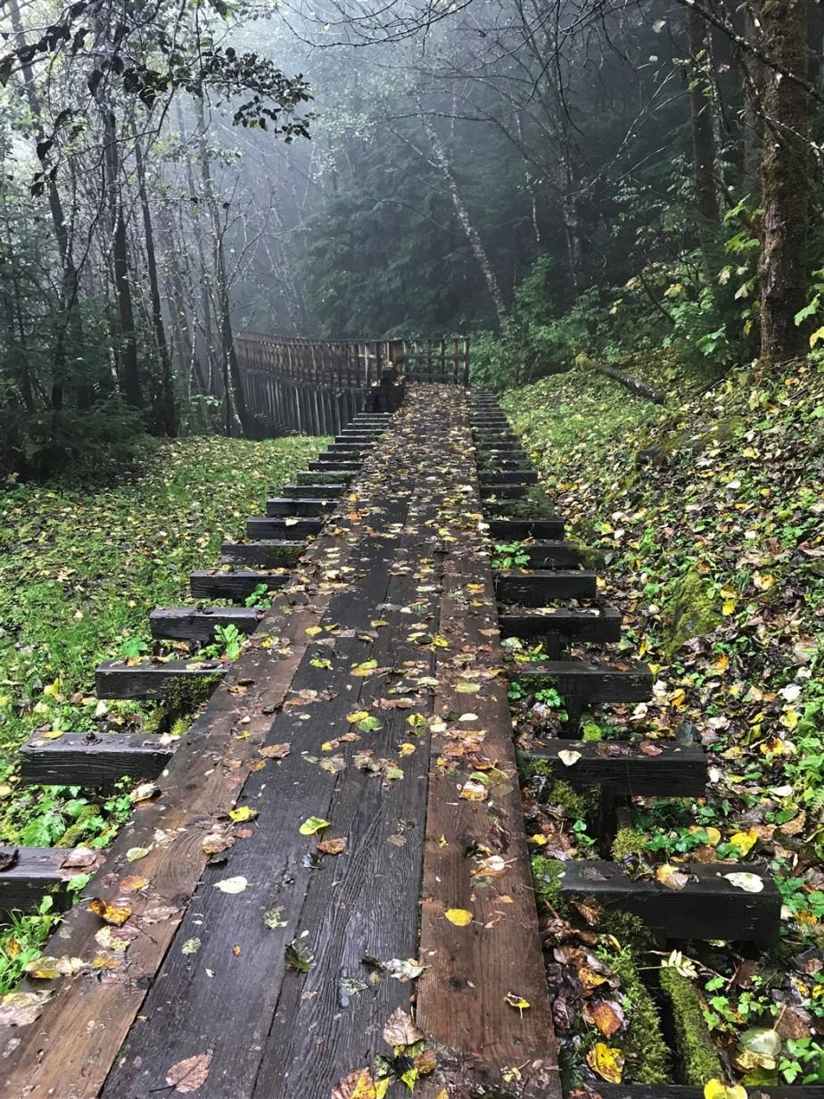 2017 09 23 10 Juneau AK Flume Trail.jpg