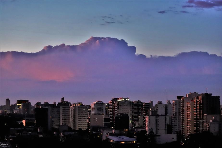 2020 02 07 6 Olivos Argentina.jpg