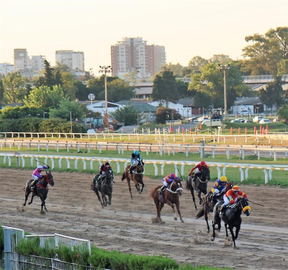 2020 03 07 322 Buenos Aires Hippodromo Palermo.jpg