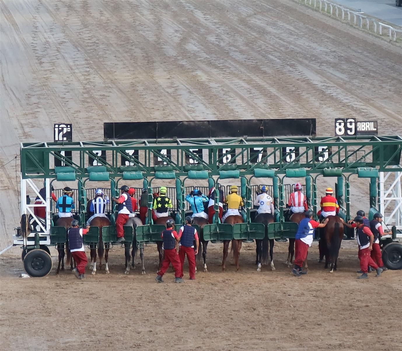 2020 03 07 335 Buenos Aires Hippodromo Palermo.jpg
