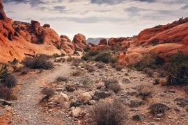Nevada Humanities