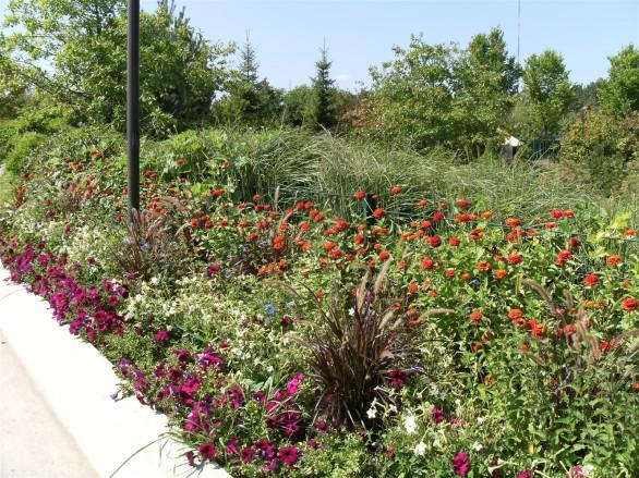 2008 08 19 116 Grand Rapids MI Meijer Gardens