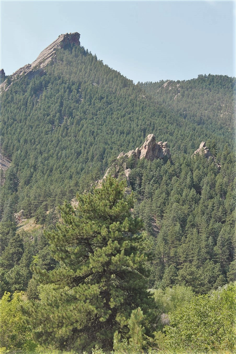 2012 07 04 37 Boulder CO.jpg