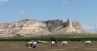 2012 07 09 37 Nebraska