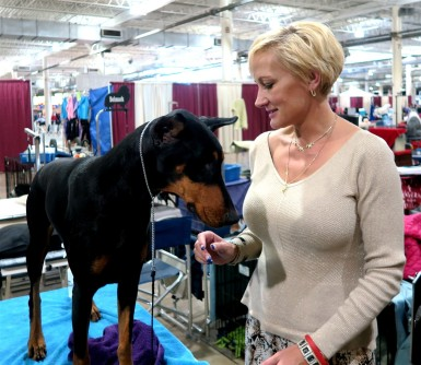 2015 11 15 89 Columbus Fall Dog Show