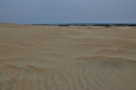 2016 11 09 75 Nags Head NC Jockeys Ridge State Park Sand Dunes