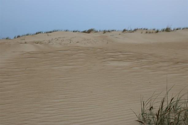 2016 11 09 85 Nags Head NC Jockeys Ridge State Park Sand Dunes