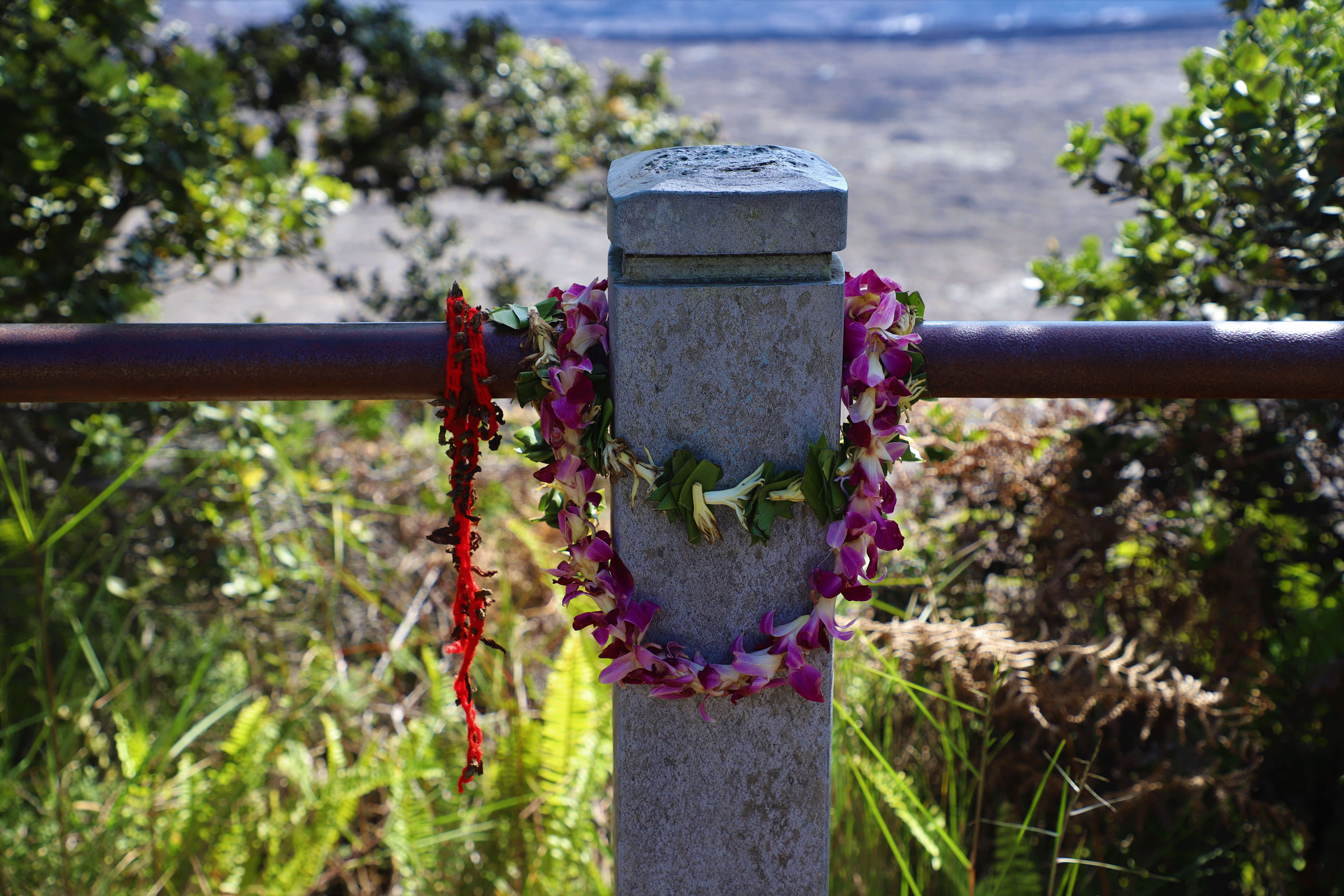 2018 11 14 84 Big Island HI Volcano National Park.JPG