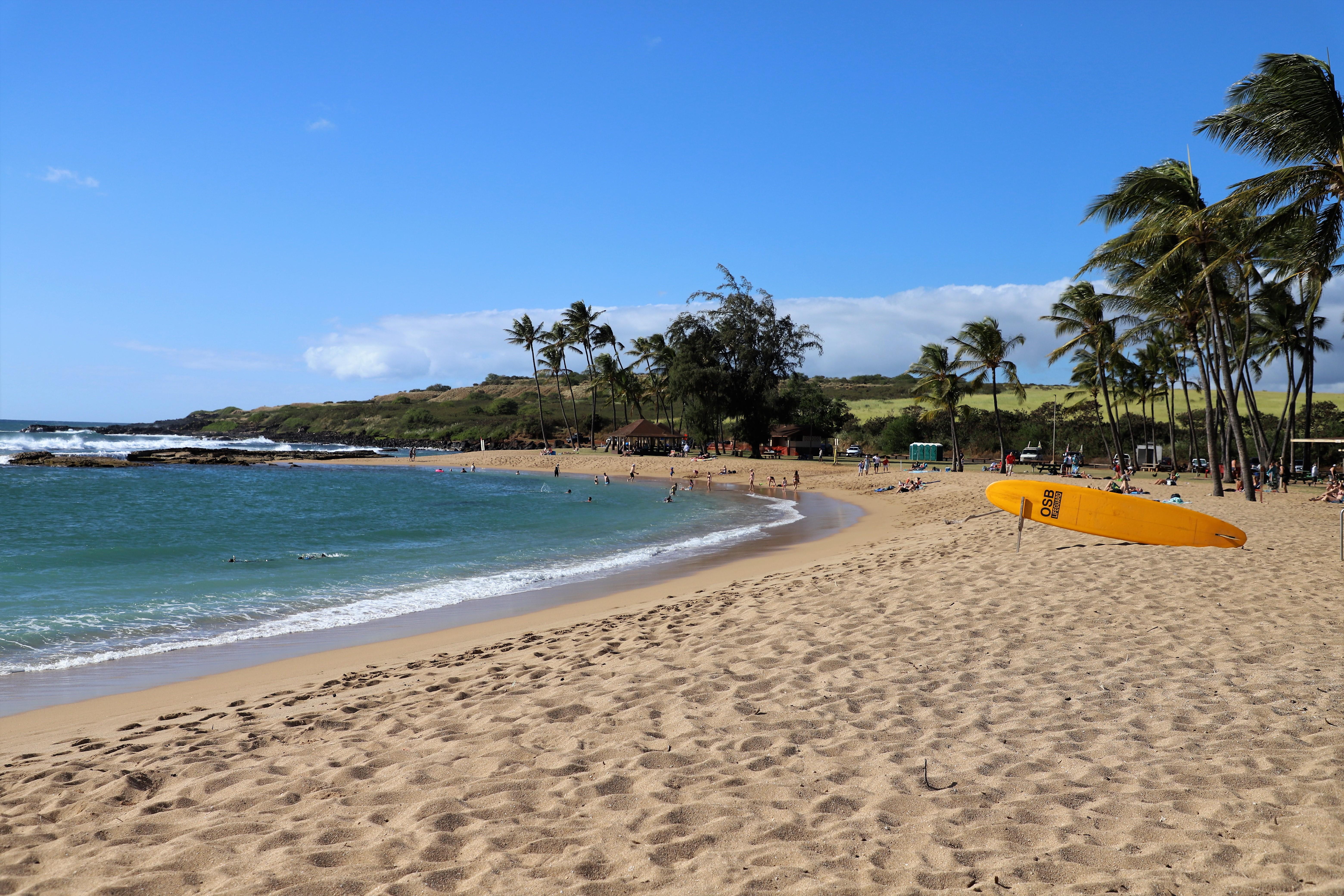 2018 11 28 188 Kauai HI.JPG