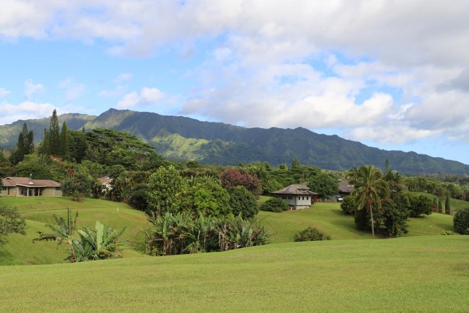 2018 11 29 28 Kauai HI.JPG
