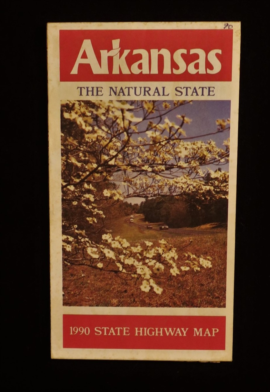 Government State Arkansas 1990.jpg