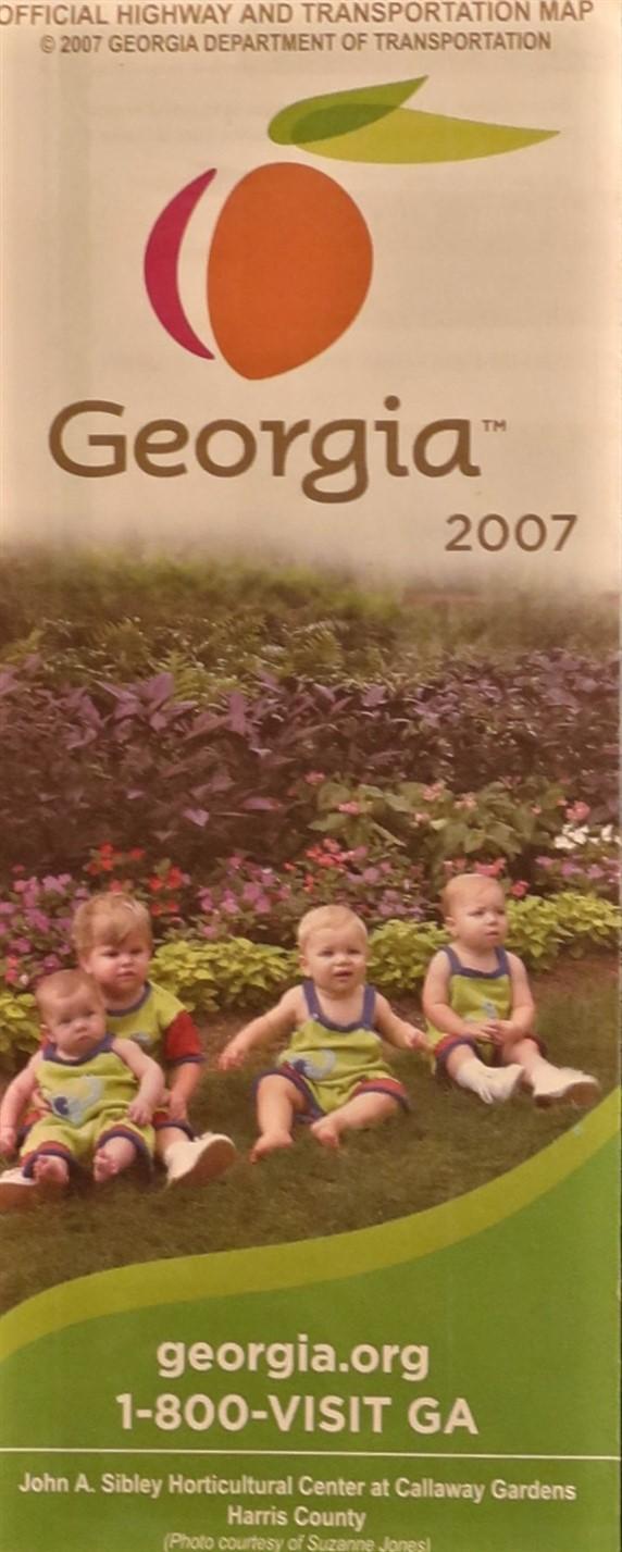 Government State Georgia 2007.jpg