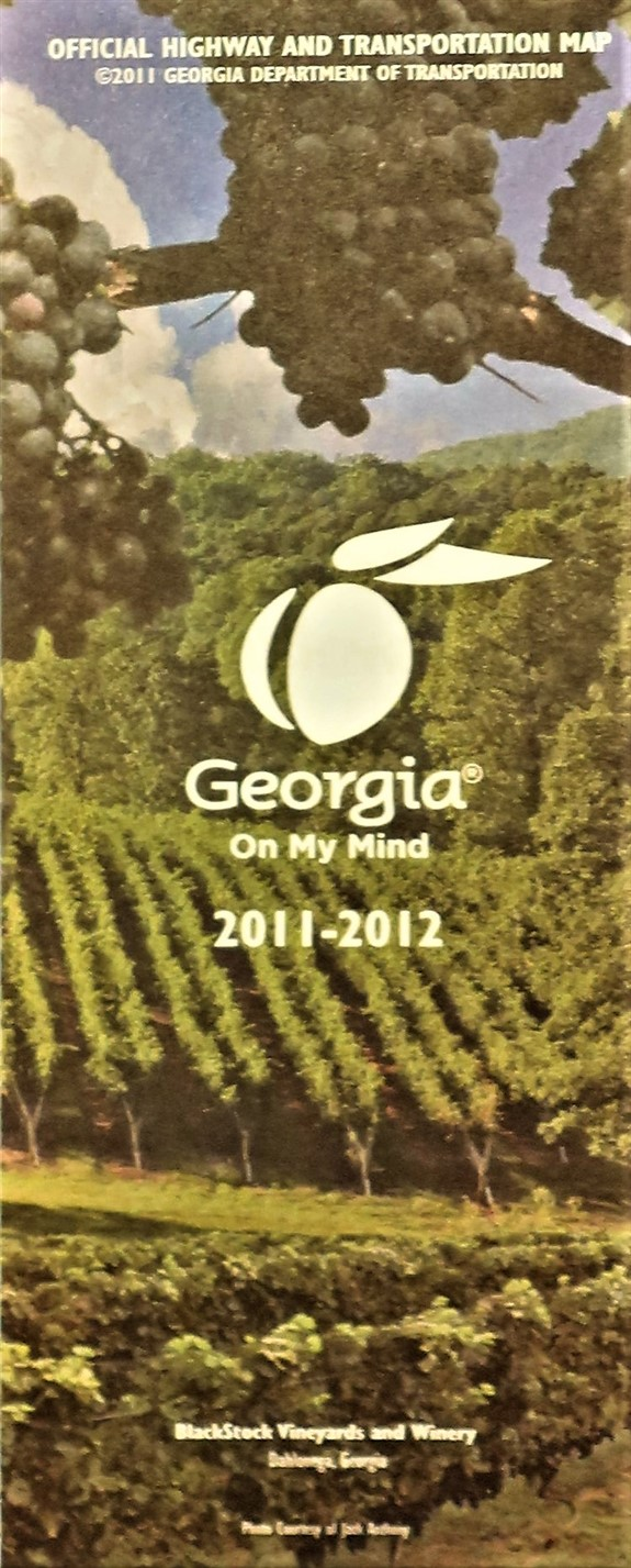 Government State Georgia 2011.jpg