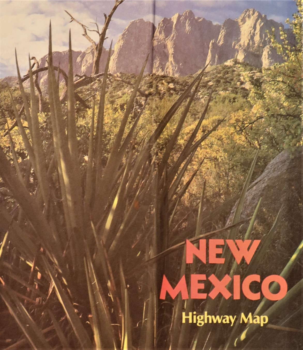 Government State New Mexico 1995.jpg