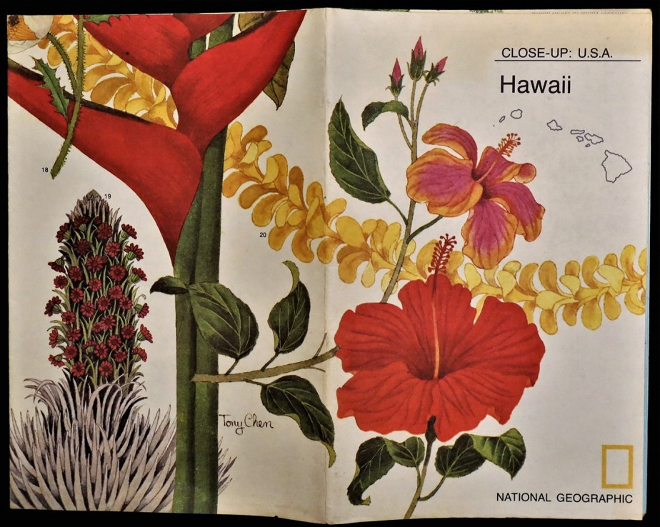 National Geographic Hawaii 1976 12.jpg