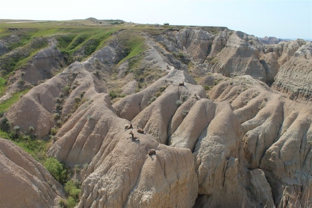 2012 07 11 31 South Dakota Badlands