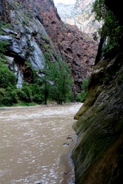2015 09 15 39 Zion National Park UT