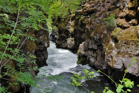 2016 05 30 58 Rogue River OR