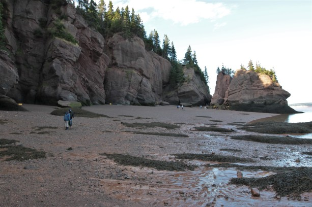 2016 09 03 98 Hopewell Rocks NB