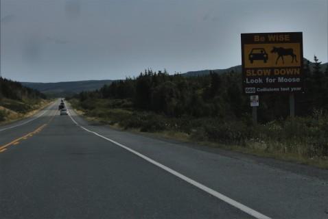 2016 09 05 19 Across Newfoundland