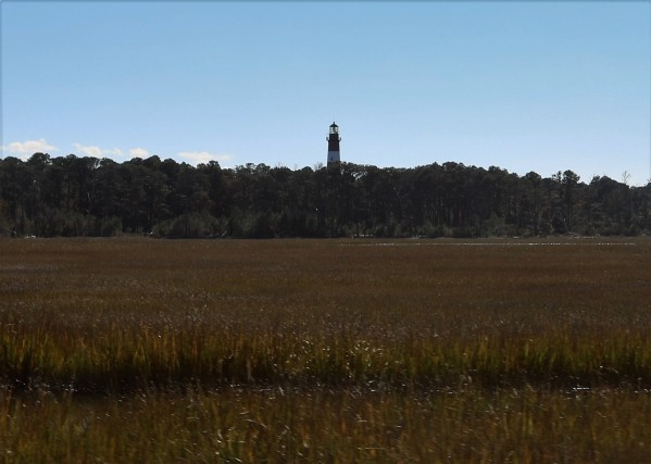 2016 11 07 116 Chincoteague VA