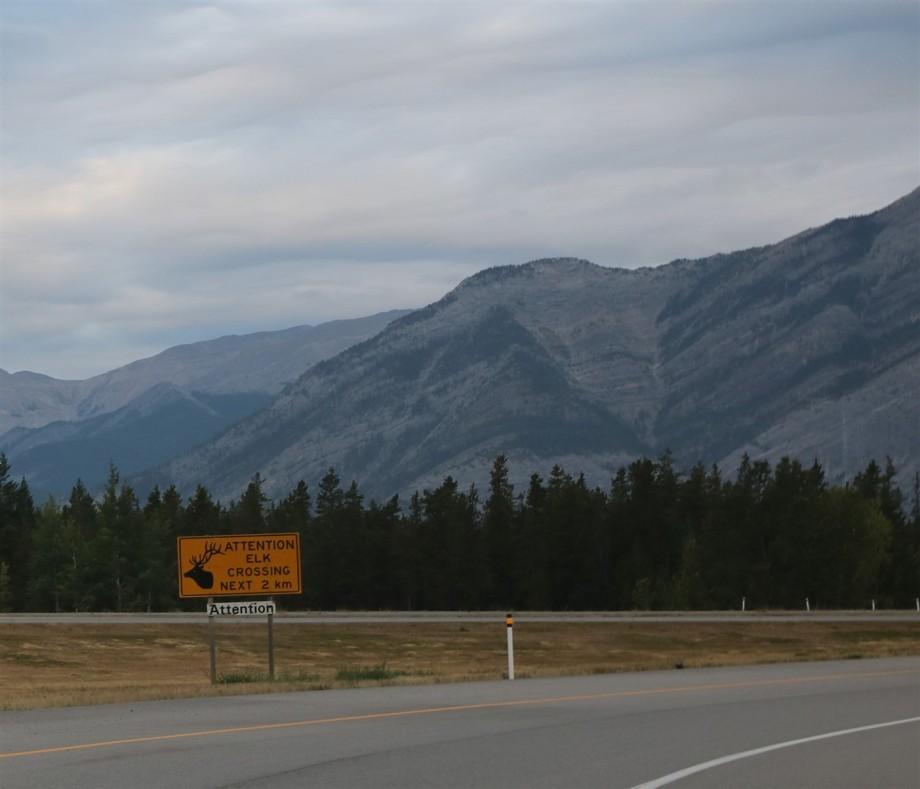 2017 09 04 17 Banff Alberta