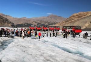 2017 09 05 153 Columbia Icefields Alberta