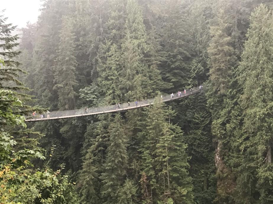 2017 09 08 121d Vancouver Capilano Park - Copy