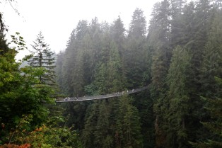2017 09 08 134 Vancouver Capilano Park - Copy
