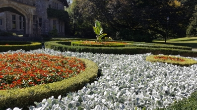 2017 09 10 146 Victoria BC Hatley Castle & Gardens