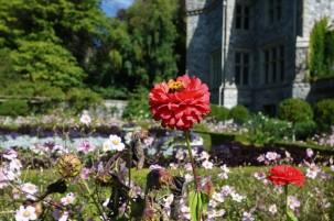 2017 09 10 55 Victoria BC Hatley Castle & Gardens