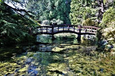 2017 09 10 86 Victoria BC Hatley Castle & Gardens