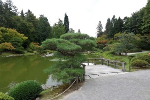 2017 09 13 45 Seattle Japanese Gardens