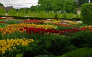 2018 05 06 181 Kennett Square PA Longwood Gardens