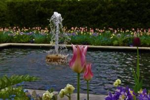 2018 05 06 21 Kennett Square PA Longwood Gardens